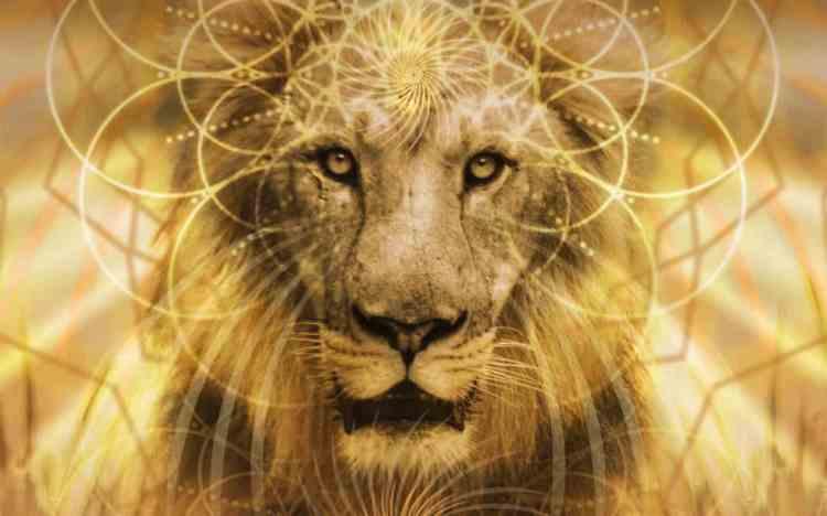 Lionsgate–GlobalActivation.900x900-1080x675
